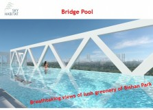 bridge pool